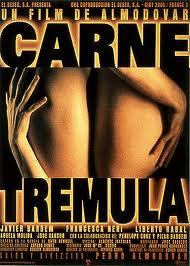 """""""Carne trémula"""", de Ruth Rendell, fue otro de los textos que dio pie a un filme del responsable de """"La flor de mi secreto"""""""